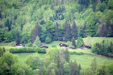 Free Houses In Forest, Mount Titlis Royalty Free Stock Photography - 5465407