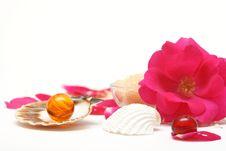 Free Rose Aromatherapy Royalty Free Stock Photos - 5466718