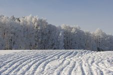 Free Winter Landscape Stock Images - 5467144