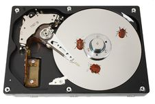 Hard Disk, Three Bugs Stock Images