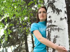 The Girl With Birch Stock Photography