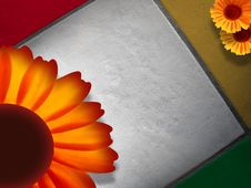 Free Coloured Bricks With Three Sunflowers Royalty Free Stock Photos - 5467828