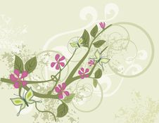Free Floral Background Series Royalty Free Stock Images - 5468169