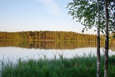 Free Evening Lake And Forest Royalty Free Stock Photos - 5468498