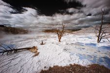 Free Yellowstone Terraces, Infrared Royalty Free Stock Photography - 5468817