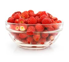 Free Red Strawberry Fruits In Glass Vase Stock Image - 5468851