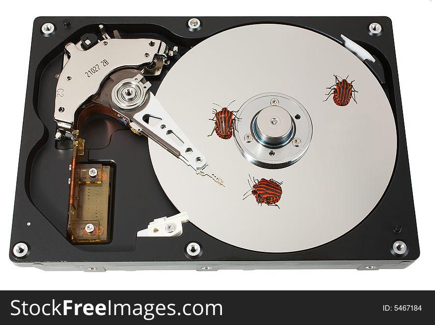 Hard disk, three bugs