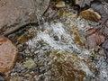 Free Mountain Stream Royalty Free Stock Photos - 54663418