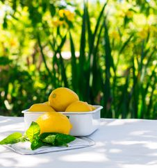 Free Fresh Lemons On The Table In The Open Air. Selective Focus. Stock Images - 54664574