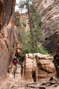Free Zion Canyon Rappeller 5 Stock Photo - 5471290