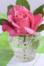 Free Glass With Pink Rose Royalty Free Stock Photo - 5472935