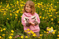 Free Pretty Girl, Sitting In Dandelions Stock Photography - 5476132