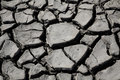 Free Parched Mud Royalty Free Stock Images - 5477239