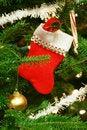Free Christmas Socks Royalty Free Stock Photos - 5477878
