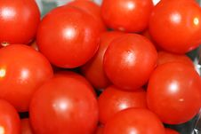 Juicy Red Tomatoes Stock Image