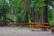 Free Picnic Area Royalty Free Stock Photo - 5471055