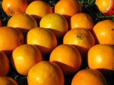 Free Oranges Royalty Free Stock Photography - 5471967