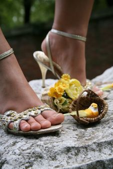 Free Silver Sandals Royalty Free Stock Photography - 5472167