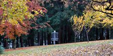 Free Park In Autumn Colours Stock Images - 5472914