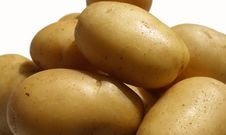 Free Isolated Potato Royalty Free Stock Images - 5472939