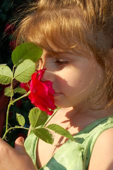 Smelling Rose Stock Photos