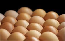 Free Eggs Stock Photography - 5474132