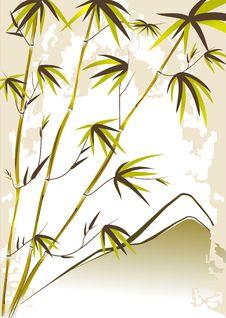 Free Bamboo Stock Photos - 5474773