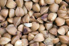 Free Buckwheat Stock Image - 5475031