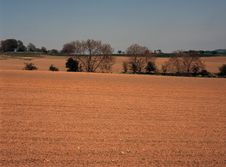 Free Ploughed Field In Spring. Stock Photos - 5476243