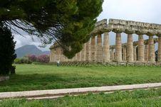 Temple Of Hera In Paestum. Stock Images
