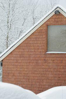 Free Under Snow Stock Photos - 5477703