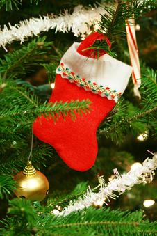Free Christmas Socks Royalty Free Stock Photos - 5477878