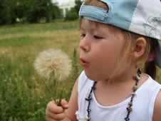 Little Girl Blowing Dandelion Seeds Royalty Free Stock Photography