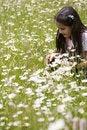 Free Picking Daisies Royalty Free Stock Image - 5482586