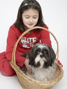 Free Child With Dog Pet Royalty Free Stock Images - 5482989