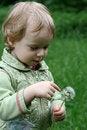 Free Girl Stock Photography - 5485242