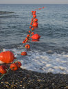 Free Red Bouys Royalty Free Stock Images - 5488159