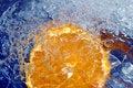 Free Fresh Orange Royalty Free Stock Image - 5488826