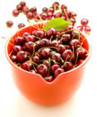 Free Fresh Cherries Royalty Free Stock Photos - 5489288