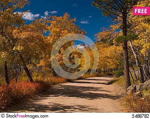 Free Aspen Road Stock Photography - 5488782