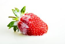 Free Strawberry In Milk Royalty Free Stock Photography - 5481187