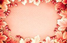 Free Autumn Frame Stock Photo - 5481770