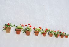 Free Row Of Flowerpots Stock Photos - 5484123
