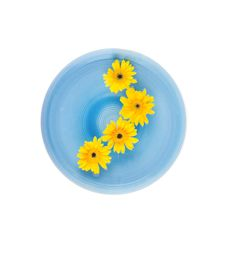 Yellow Gerbera Daisies In Blue Bowl