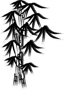 Free Bamboo Tree Royalty Free Stock Photo - 5485055