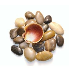 Pebbles With Seashell Stock Images