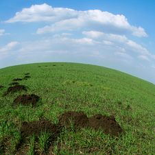 Free Green Land Stock Photo - 5485730