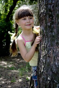 Free The Little Girl In Wood Royalty Free Stock Images - 5486939