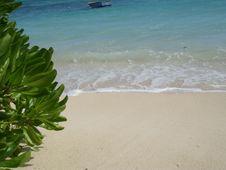 Free Sea Beach Background Royalty Free Stock Photos - 5487078