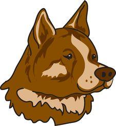 Free Akita Dog Stock Photo - 5487280